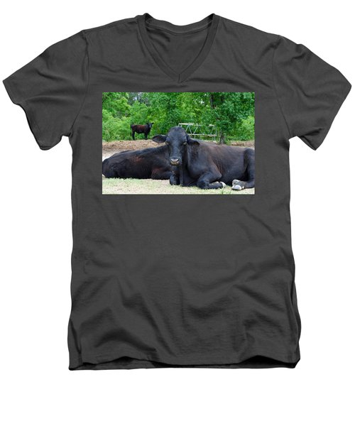 Bull Relaxing Men's V-Neck T-Shirt