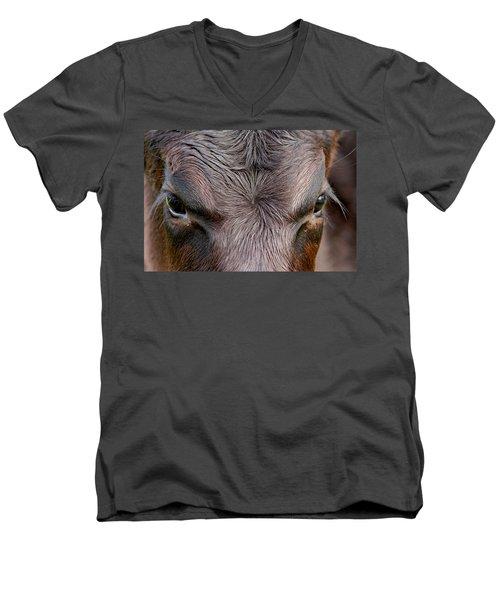 Bull's Eye Men's V-Neck T-Shirt