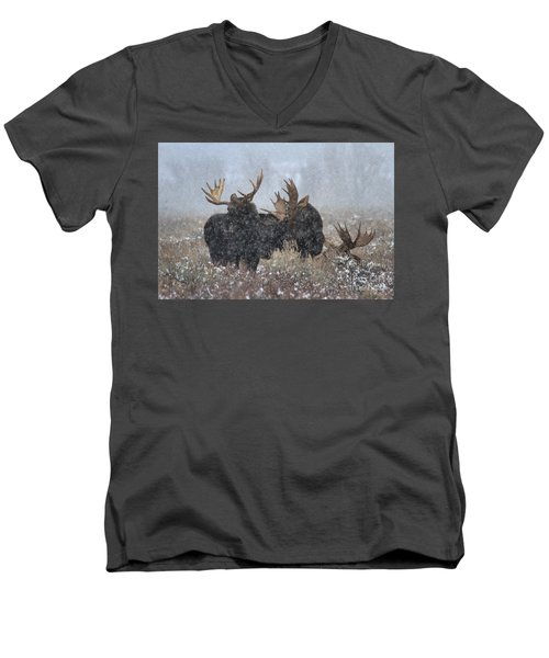 Men's V-Neck T-Shirt featuring the photograph Bulls In The Snow by Adam Jewell