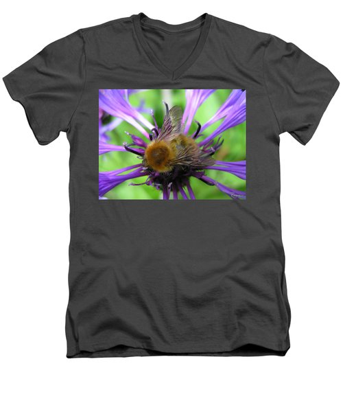 Bumblebee In Blue Men's V-Neck T-Shirt