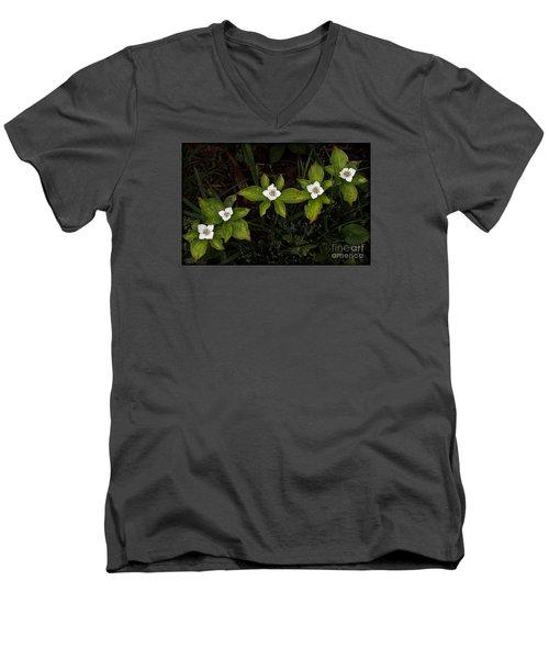 Bunchberry Flowers Men's V-Neck T-Shirt