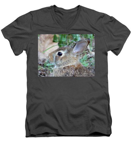 Bunny Portrait Men's V-Neck T-Shirt