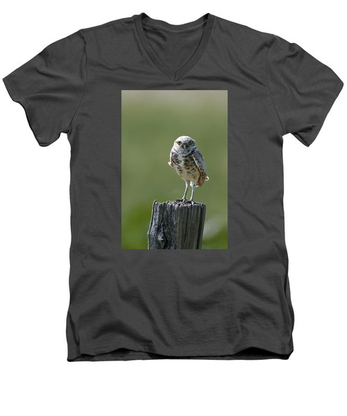 Men's V-Neck T-Shirt featuring the photograph Burrowing Owl by Gary Lengyel