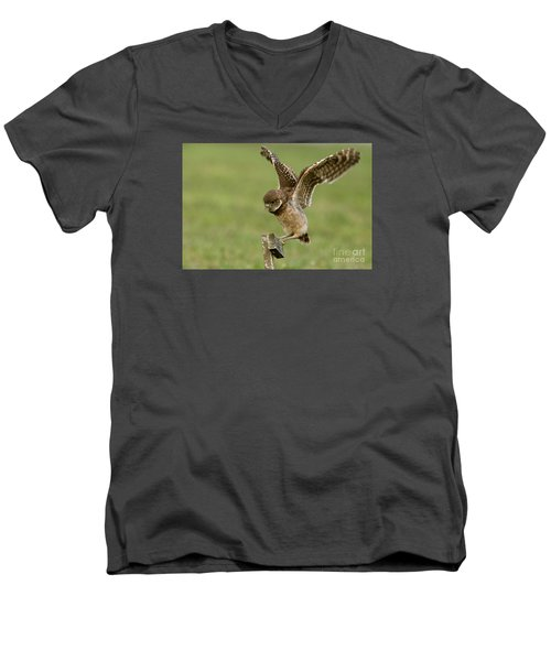 Burrowing Owl - Learning To Fly Men's V-Neck T-Shirt