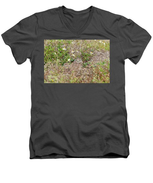 Burrowing Owl Outside His Home Men's V-Neck T-Shirt
