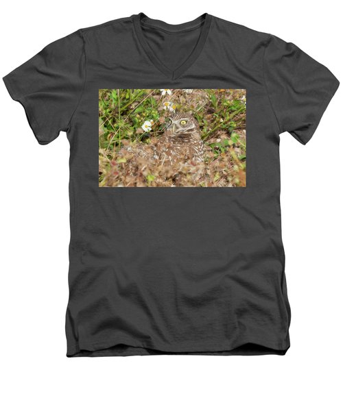 Burrowing Owl With Wide Eye Men's V-Neck T-Shirt