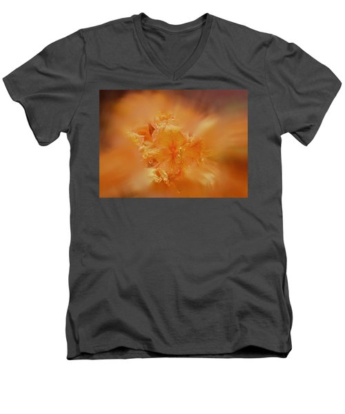 Burst Of Gold Men's V-Neck T-Shirt by Richard Cummings