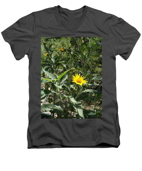 Burst Of Sun Flower Men's V-Neck T-Shirt