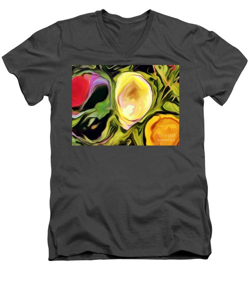 Three Sisters Men's V-Neck T-Shirt by Kathie Chicoine