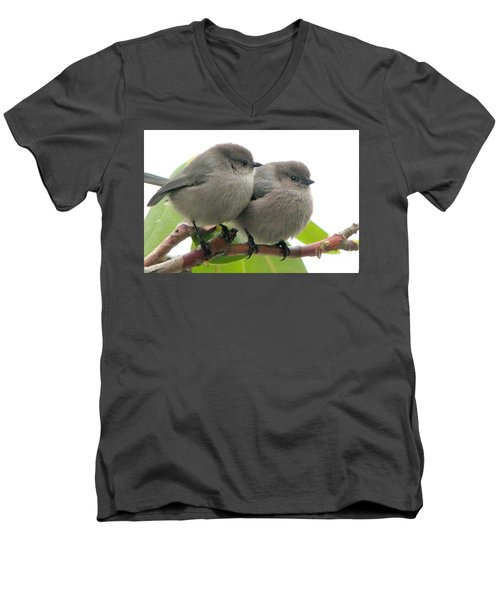 Bushtits Men's V-Neck T-Shirt
