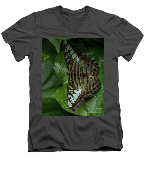 Butterfly 4 Men's V-Neck T-Shirt
