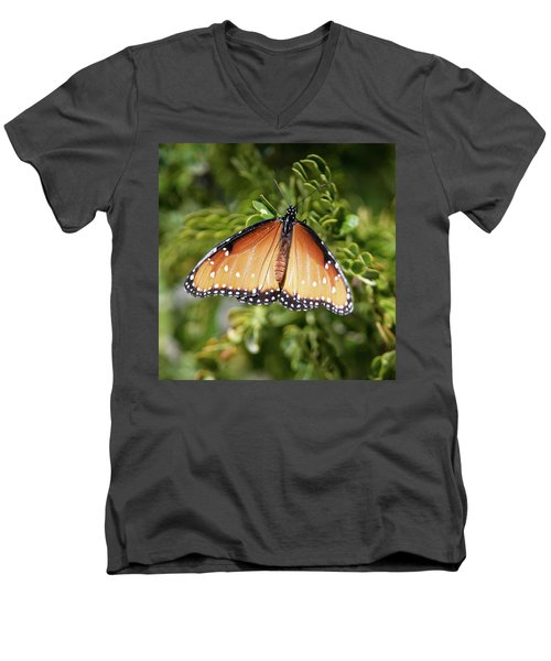 Butterfly 6 Men's V-Neck T-Shirt