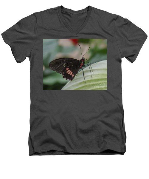 Butterfly 7 Men's V-Neck T-Shirt