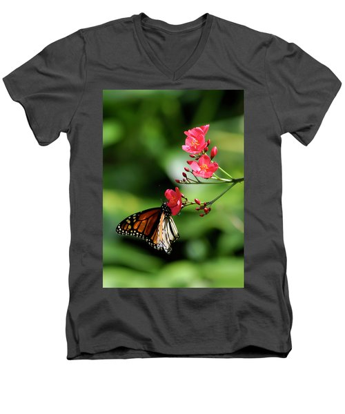 Butterfly And Blossom Men's V-Neck T-Shirt