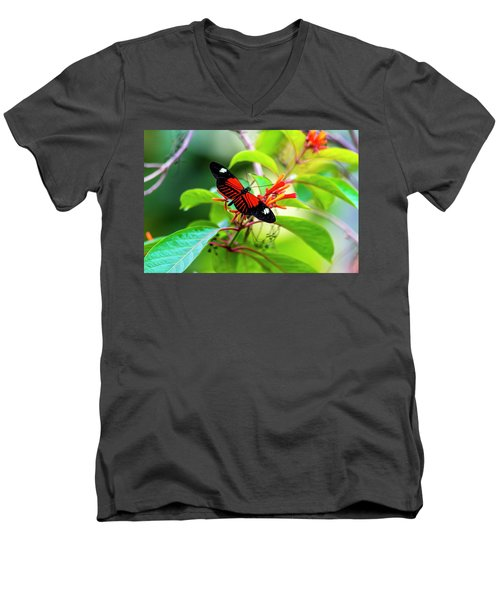 Men's V-Neck T-Shirt featuring the photograph Butterfly  by David Morefield