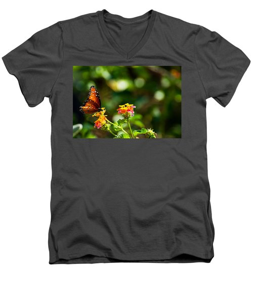 Butterfly On A Flower Men's V-Neck T-Shirt