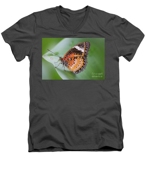 Men's V-Neck T-Shirt featuring the photograph Butterfly On The Edge Of Leaf by John Wadleigh
