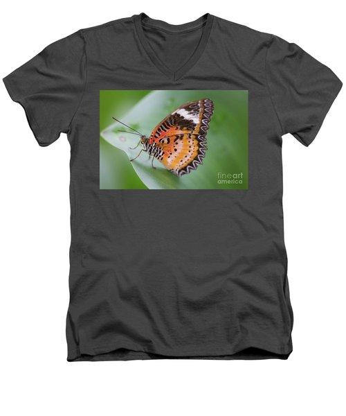 Butterfly On The Edge Of Leaf Men's V-Neck T-Shirt
