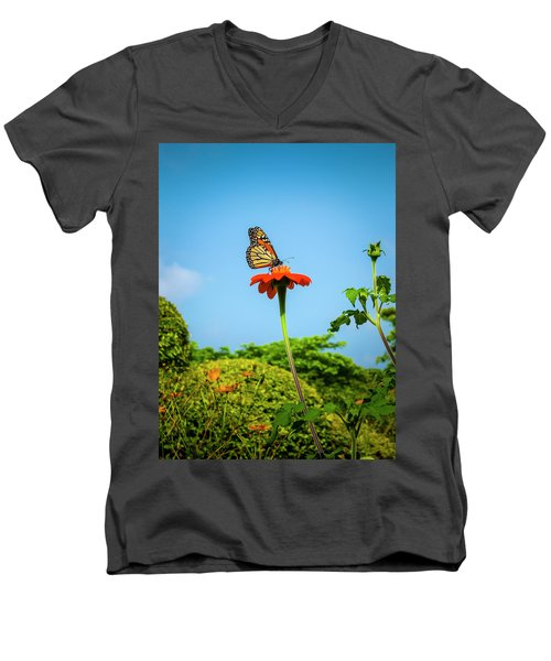 Butterfly Perch Men's V-Neck T-Shirt