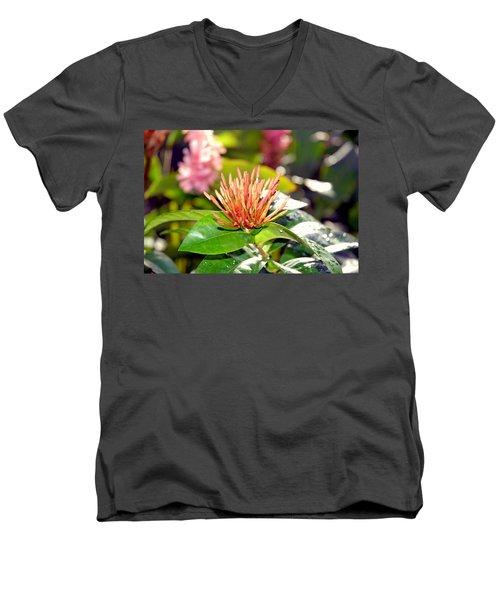 Butterfly Snack Men's V-Neck T-Shirt