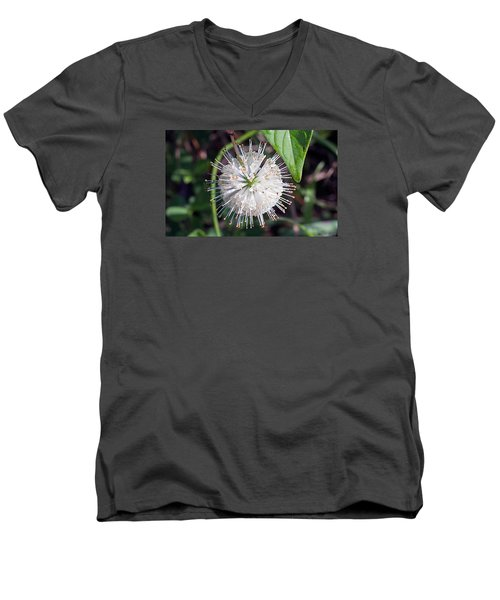 Buttonbush Men's V-Neck T-Shirt by Kenneth Albin