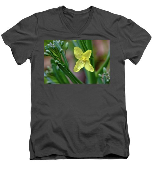 Cabbage Blossom Men's V-Neck T-Shirt