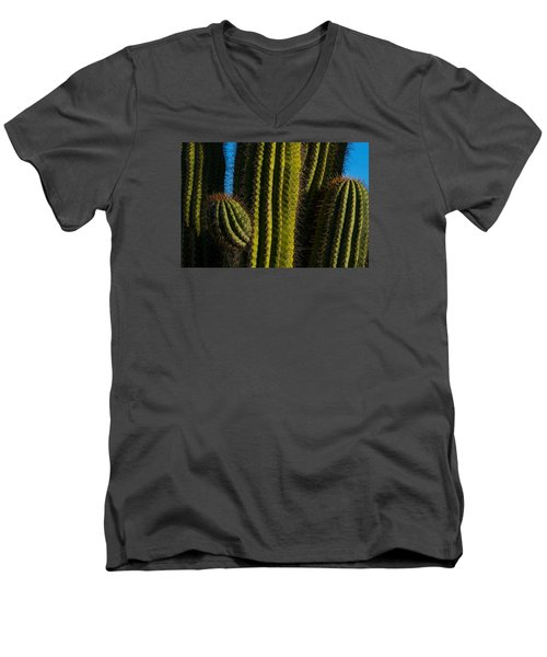 Cacti  Men's V-Neck T-Shirt by Derek Dean