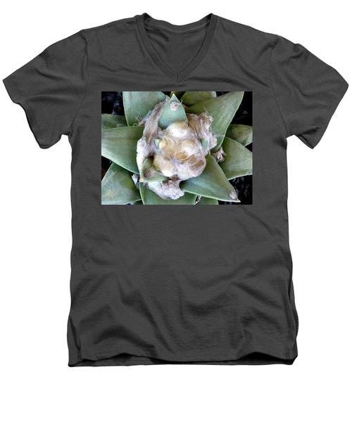 Cactus 3 Men's V-Neck T-Shirt