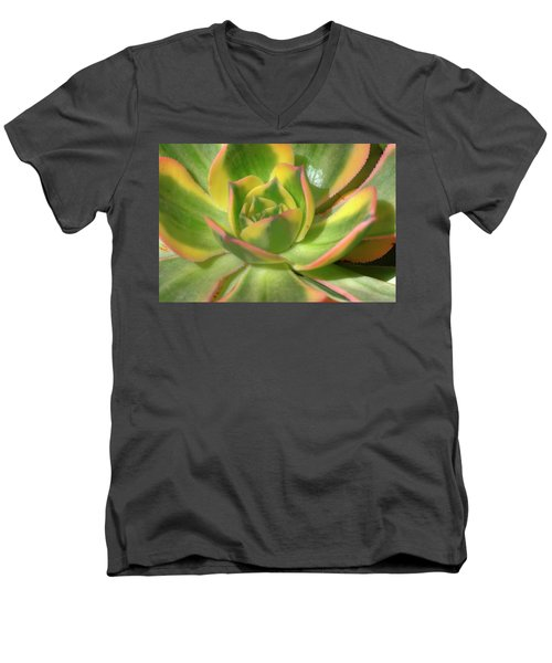Men's V-Neck T-Shirt featuring the photograph Cactus 4 by Jim and Emily Bush