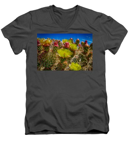 Cactus At The End Of The Road Men's V-Neck T-Shirt by Bartz Johnson