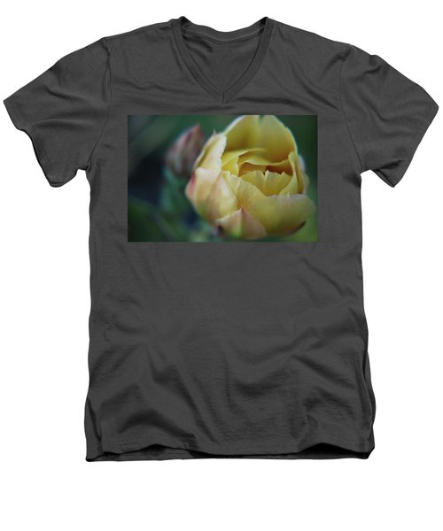 Cactus Beauty Men's V-Neck T-Shirt