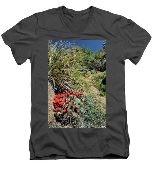 Crimson Barrel Cactus Men's V-Neck T-Shirt