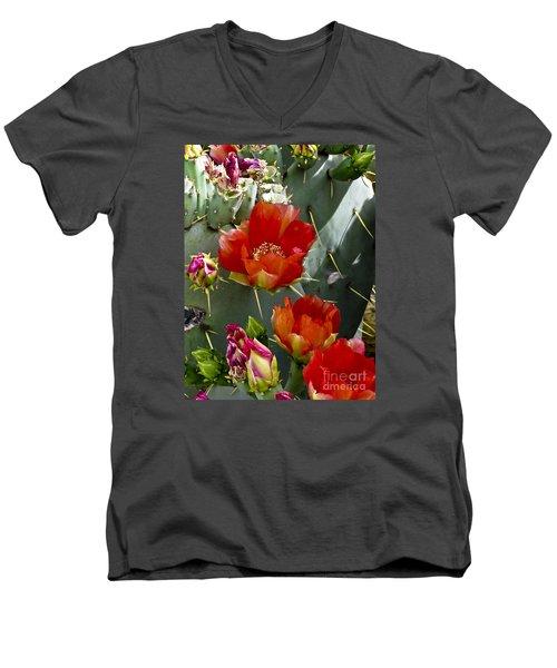 Cactus Blossom Men's V-Neck T-Shirt by Kathy McClure