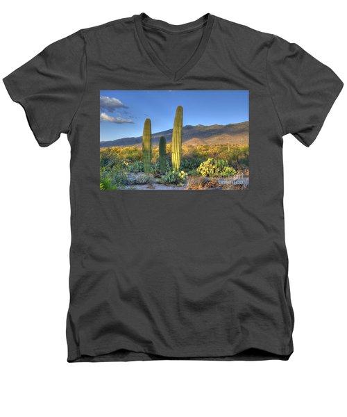 Cactus Desert Landscape Men's V-Neck T-Shirt