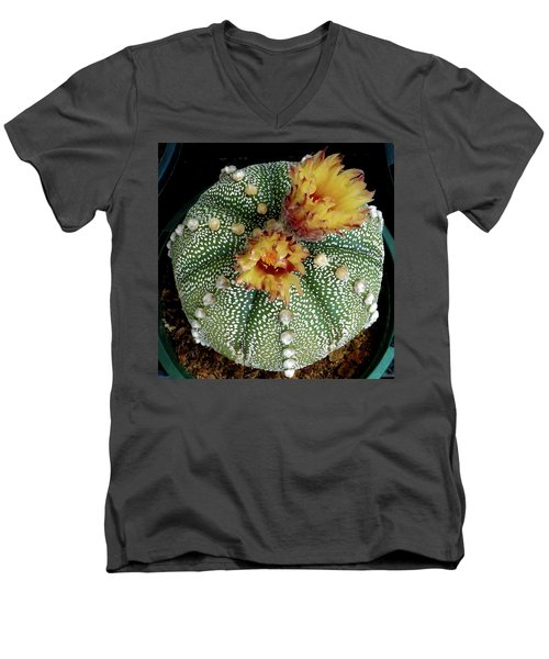 Cactus Flower 10 Men's V-Neck T-Shirt