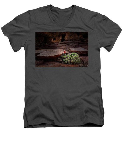 Cactus On Fire Men's V-Neck T-Shirt