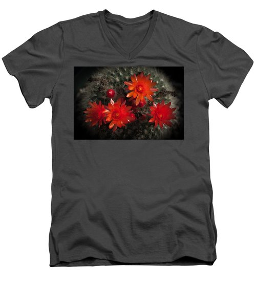 Men's V-Neck T-Shirt featuring the photograph Cactus Red Flowers by Catherine Lau