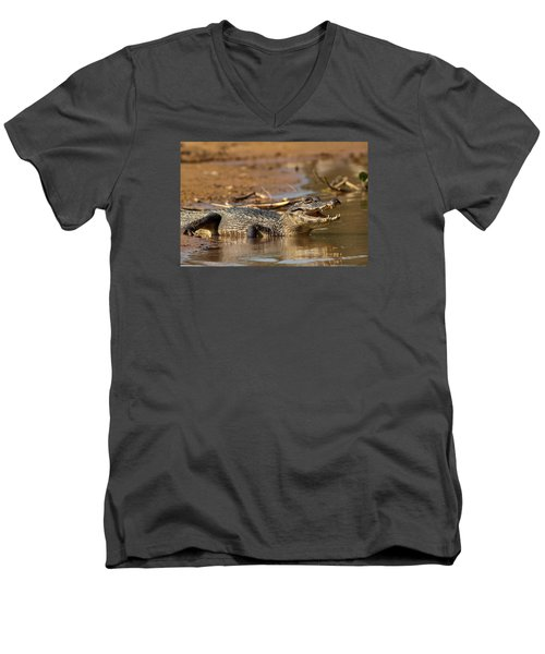 Caiman With Open Mouth Men's V-Neck T-Shirt by Aivar Mikko