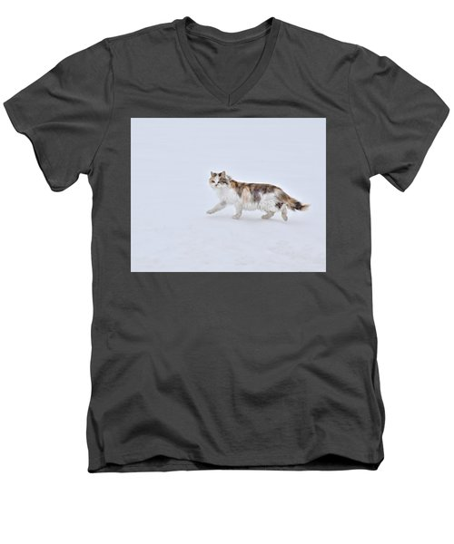 Calico Huntress Men's V-Neck T-Shirt