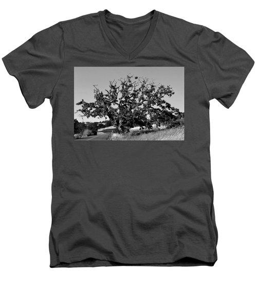 California Roadside Tree - Black And White Men's V-Neck T-Shirt by Matt Harang