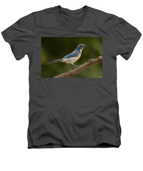 Men's V-Neck T-Shirt featuring the photograph California Scrub Jay by Doug Herr