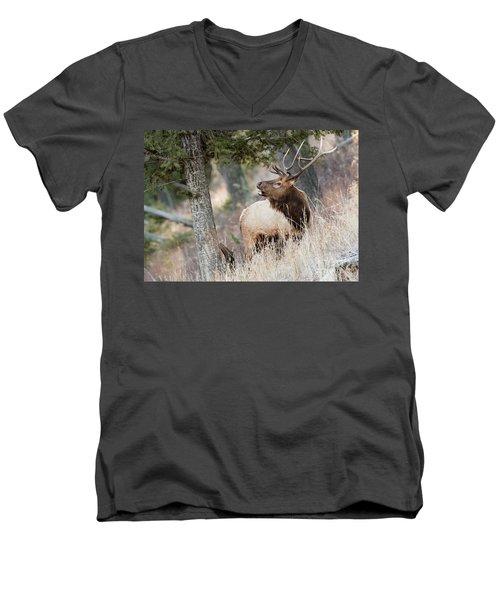 Calling Her Name Men's V-Neck T-Shirt