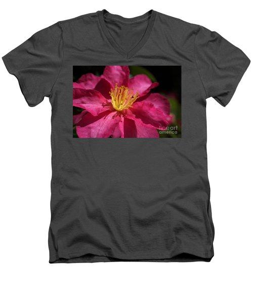 Camellia Sasanqua Men's V-Neck T-Shirt