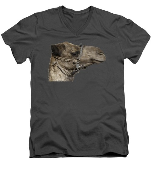 Camel's Head Men's V-Neck T-Shirt by Roy Pedersen