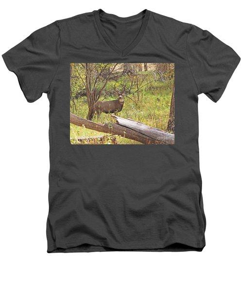 Camouflaged Buck Crystal Creek Colorado IIi Men's V-Neck T-Shirt