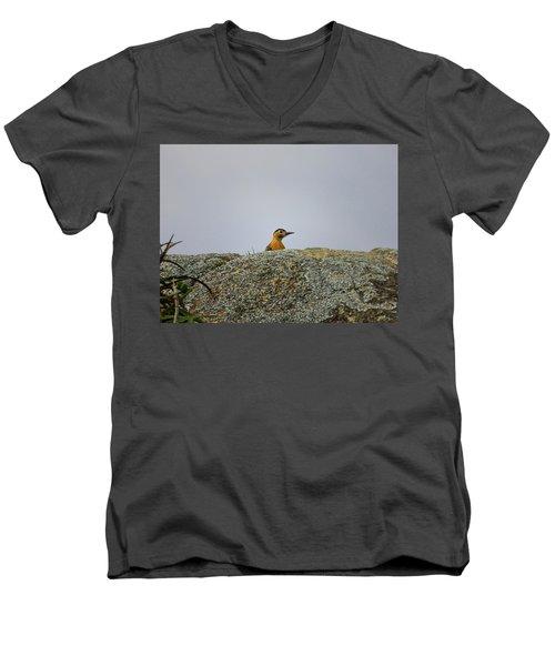 Campo Flicker Men's V-Neck T-Shirt