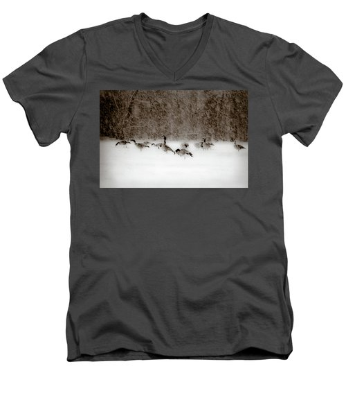 Canada Geese Feeding In Winter Men's V-Neck T-Shirt