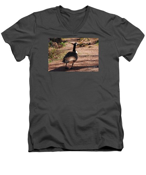 Men's V-Neck T-Shirt featuring the photograph Canada Goose 20120406_63a by Tina Hopkins