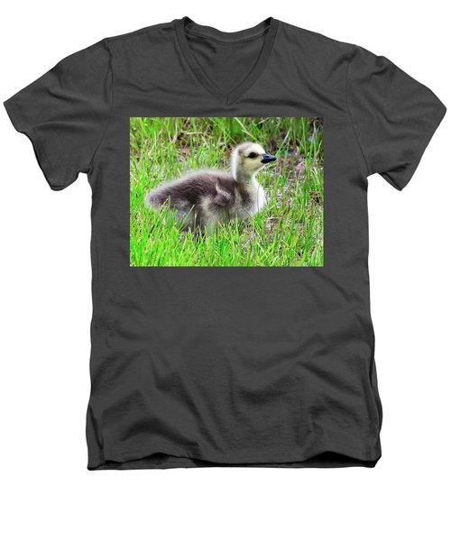 Canada Goose Gosling Men's V-Neck T-Shirt