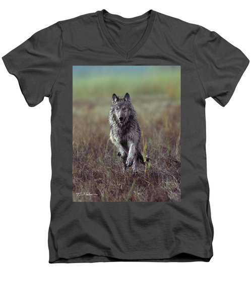 Canis Lupus Men's V-Neck T-Shirt by Tim Fitzharris